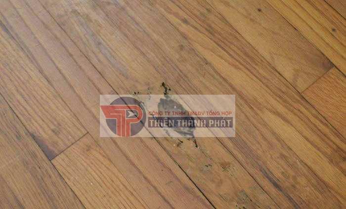 Bước 1: Tìm ra vị trí sàn gỗ bị hỏng