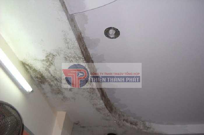 Trần thạch cao bị ngấm nước có thể do nhà bị dột, đã quá cũ